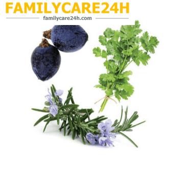 Thải Độc Gan - Zendocrine ®